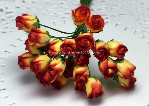 2 TONE  ROSEBUDS (pack of 12)