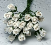 TUSCANY WHITE  ROSEBUDS (PACK OF 12)