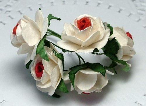 2 TONE RED/WHITE  WILD ROSES
