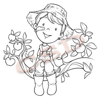 Josh - Apple Tree (pre order