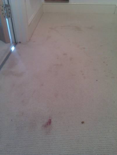 Stained Carpet Before -  swanseacarpetcleaning.co.uk