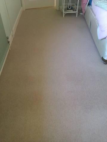 Carpet Cleaning Photots Jan 2014 020