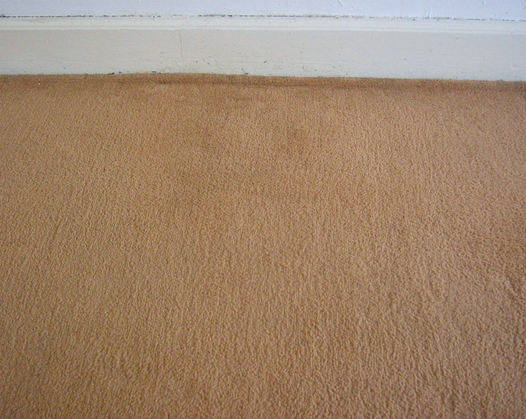 Staining removed - swanseacarpetcleaning/cleaninggalleryswansea.co.uk