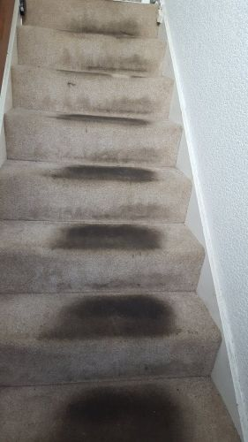 Stairs Before 16 - swanseacarpetcleaning.co.uk