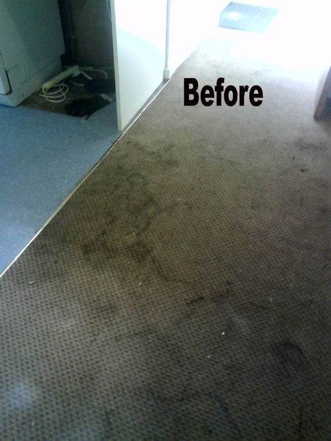 Dirty Carpet Before 1