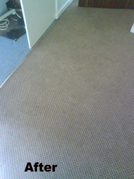 Dirty Carpet After 1