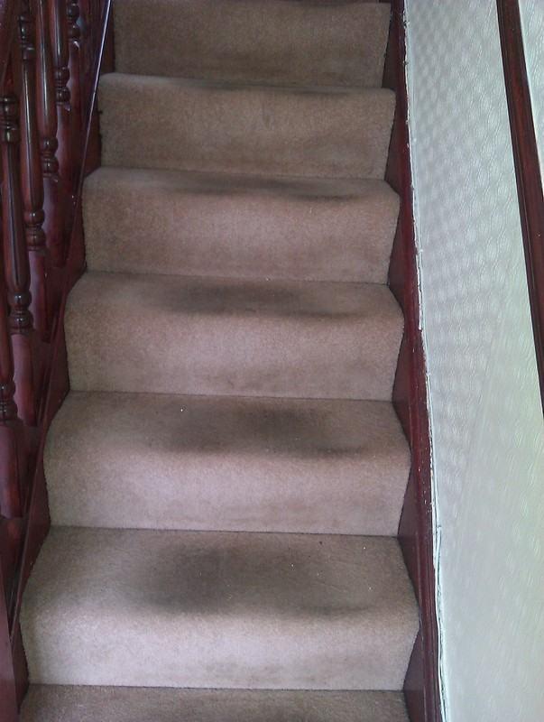 Soiled Stair Carpet - swanseacarpetcleaning.co.uk