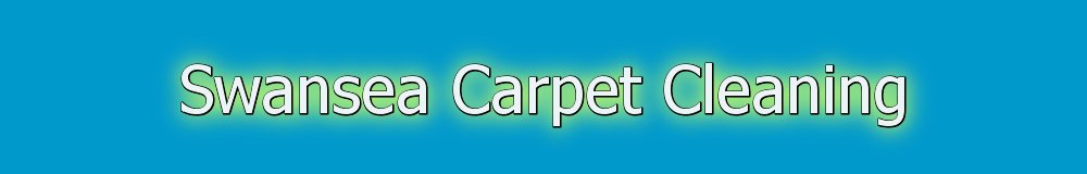 Swansea Carpet Cleaning, site logo.