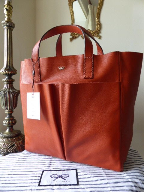 Anya Hindmarch Nevis Raw Leather Tote in Orange Velvet Calf - New*
