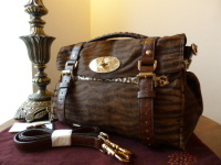 Mulberry Regular Alexa in Oak Bengal Tiger Mixed Haircalf - New*