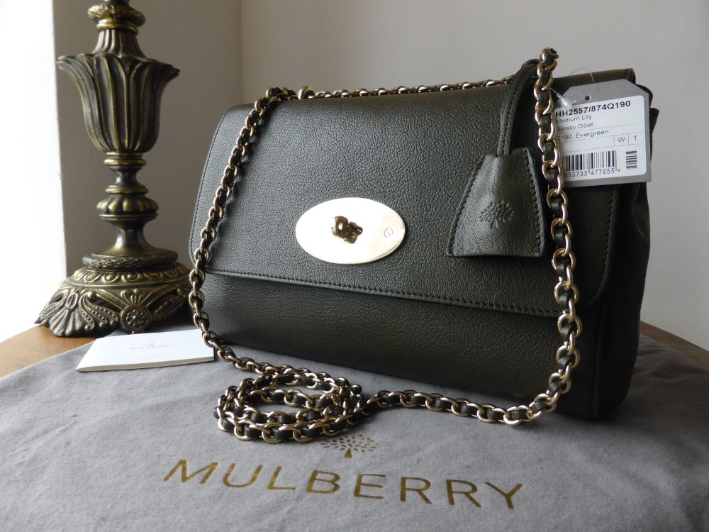 Mulberry Lily Medium in Evergreen Glossy Goat - New