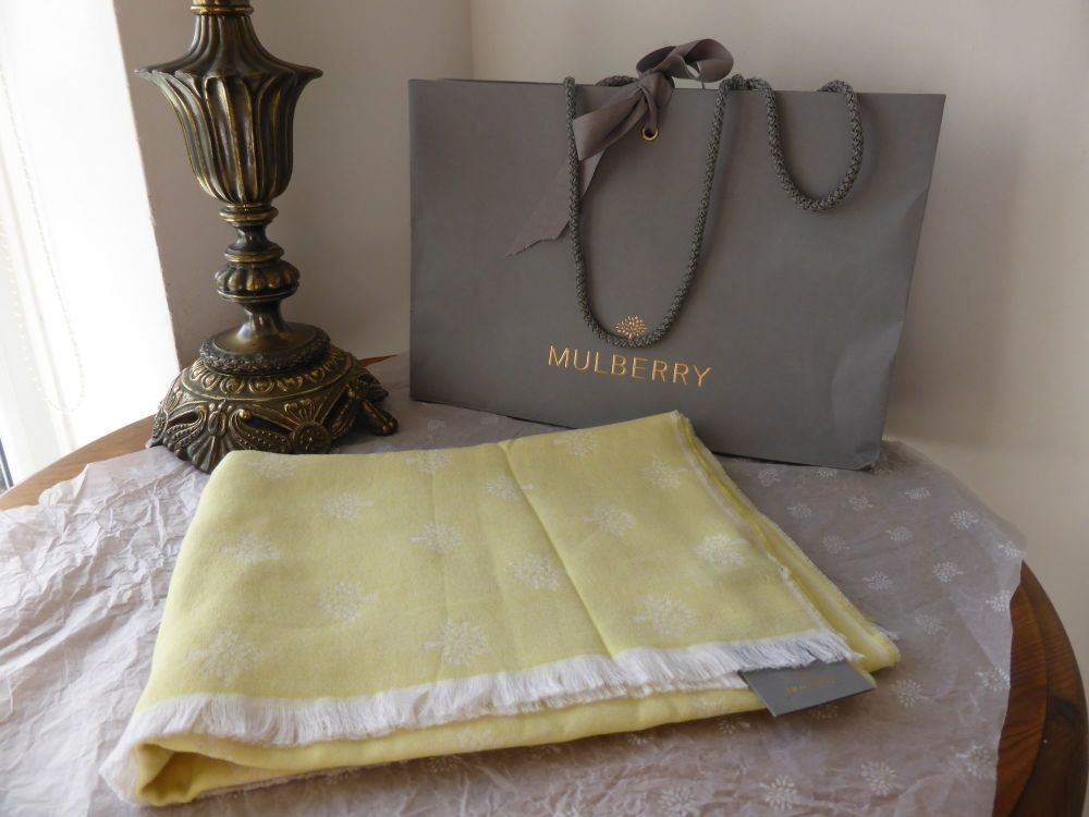 Mulberry Tamara Scarf in Lemon Sherbert Silk and Cotton Mix - New