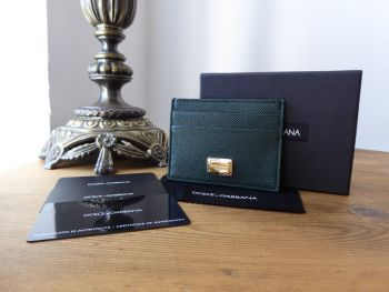 Dolce & Gabanna Card Slip Holder in Olive Green Vitello Stampa Leather - New