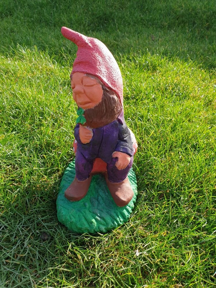 Gnome on a Toadstool