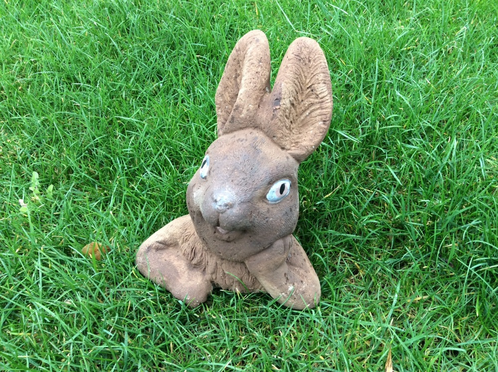 Rabbit Popping Out of the Ground