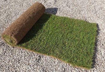 Tudor LT6 lawn turf
