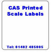 CAS Scale Labels