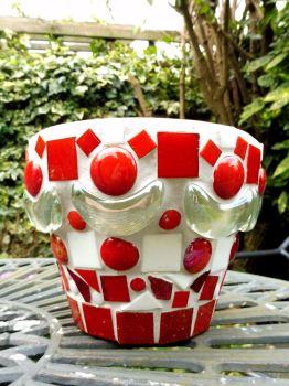 new pots july 16 011