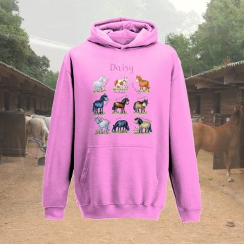 'Native Pony breeds' personalised child's hoodie