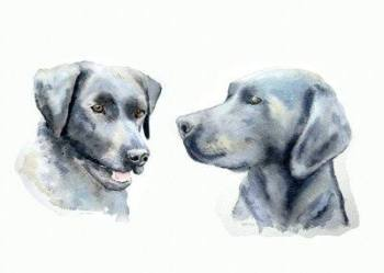 Watercolour Pet Portrait (2 pets on one picture)