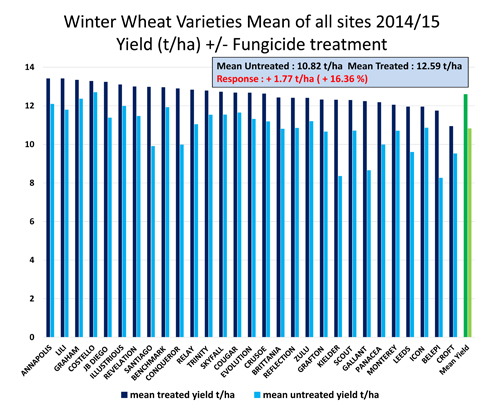 winter wheat varieties mean of all sites 2015 500