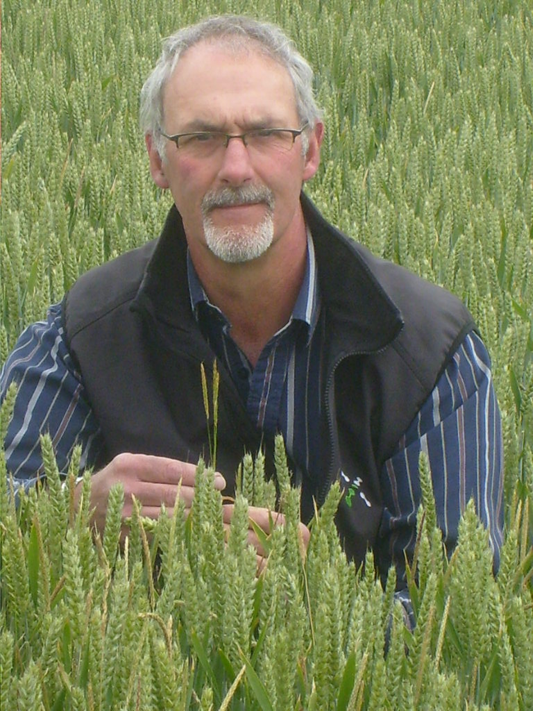 dont drill too early as weed control could be compromised says dick neale