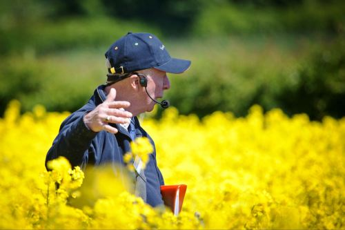 colin button believes now could be the right time to look ahead to harvest