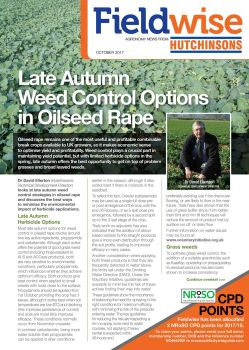 Fieldwise October