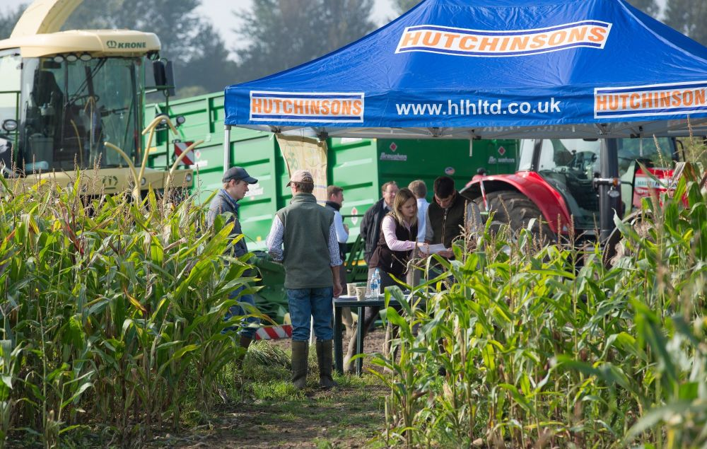 Maize Demo Day Hutchinsons Carlisle