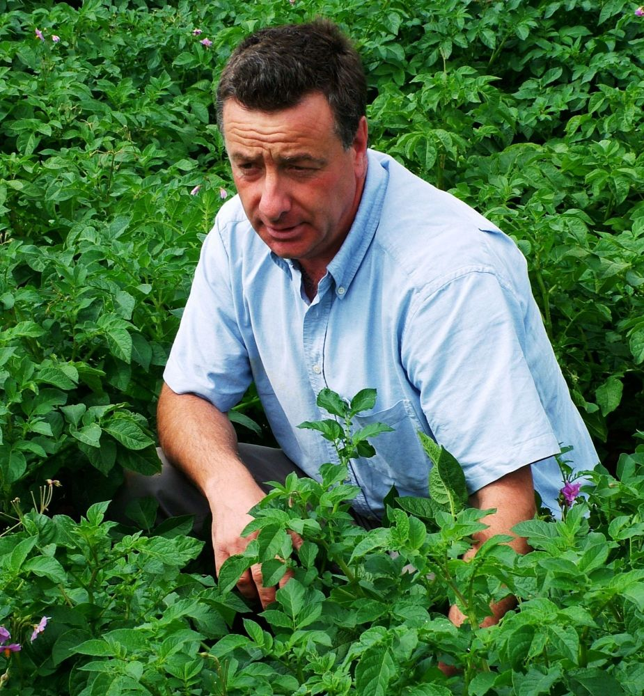 Andrew Goodinson agronomist with Hutchinsons believes in the benefit of ear