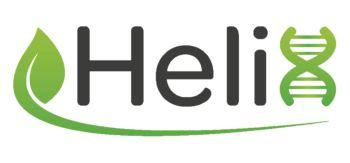 Helix Logo White Background