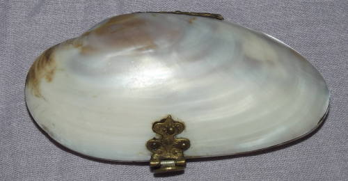 Victorian Mother of Pearl Shell Purse (3)