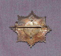Royal Indian Army Service Corps Collar Badge (2)