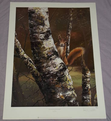 David Waller Limited Edition Signed Print, Woodland Enchantment.