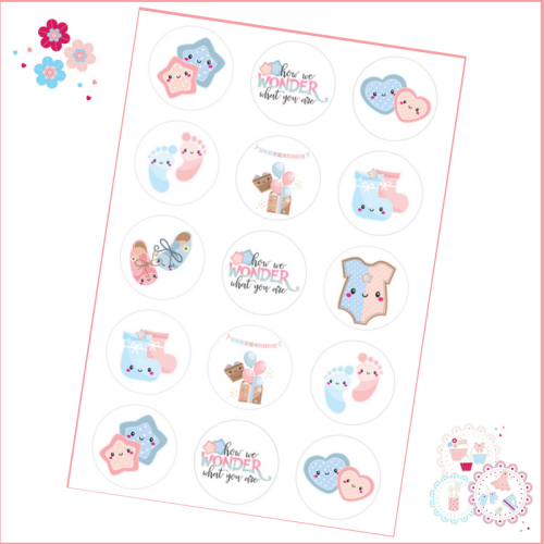 Edible Cupcake Toppers x 15 - Gender Reveal - How We Wonder What you Are