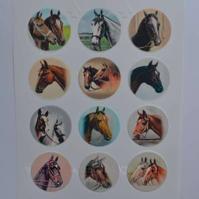 Edible Cupcake Toppers x 12 - Horses