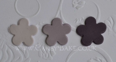 Squire's Kitchen Professional Paste Colour - Thrift