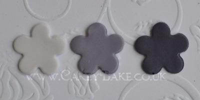 Squire's Kitchen Professional Paste Colour - Violet