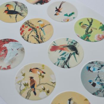 Edible Cupcake Toppers x 12 - Birds