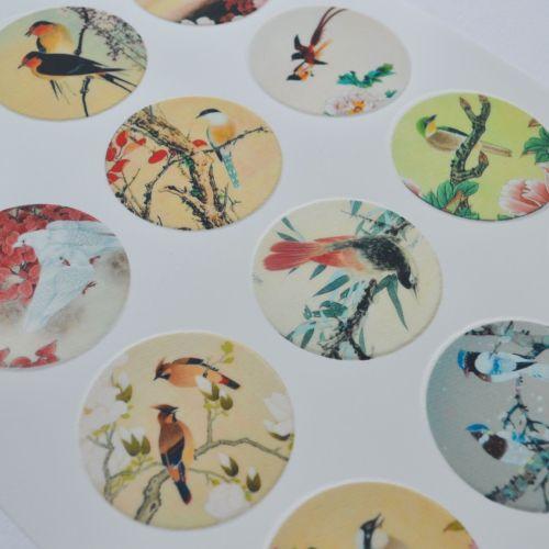 Edible Cupcake Toppers x 12 - Birds