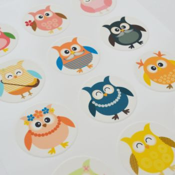 Edible Cupcake Toppers x 12 - Cute Comedy Owls