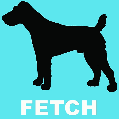 fetch_traxsource500