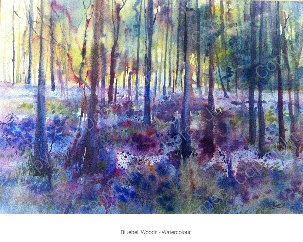 Bluebell Woods New