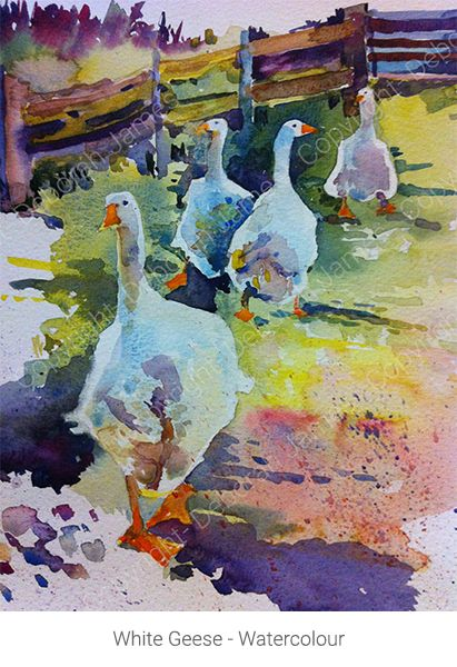 White Geese - Watercolour