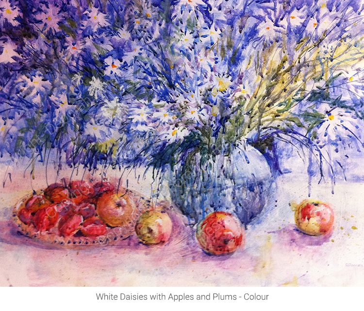 White Daisies with Apples and Plums - Watercolour
