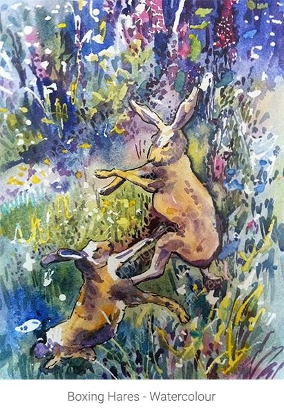 Boxing Hares - Watercolour