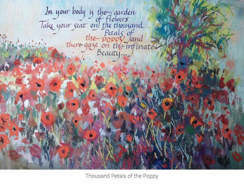 Thousand Petals of the Poppy