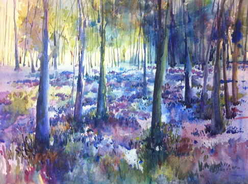 Bluebell Woods. (comm) watercolour