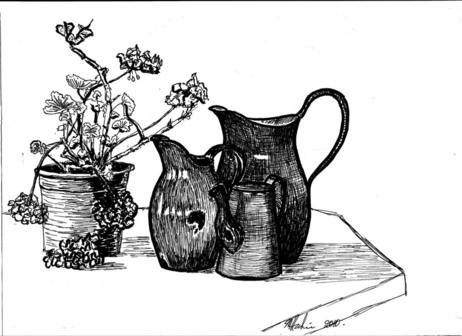 Three jugs and a geranium