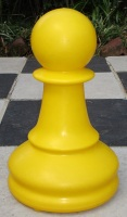 clearance yellow pawn